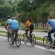 Bike Tour Destinations in North America