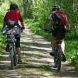 Top Bike Tour Destinations