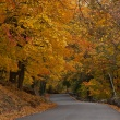New Jersey Road Trip Ideas for Fall